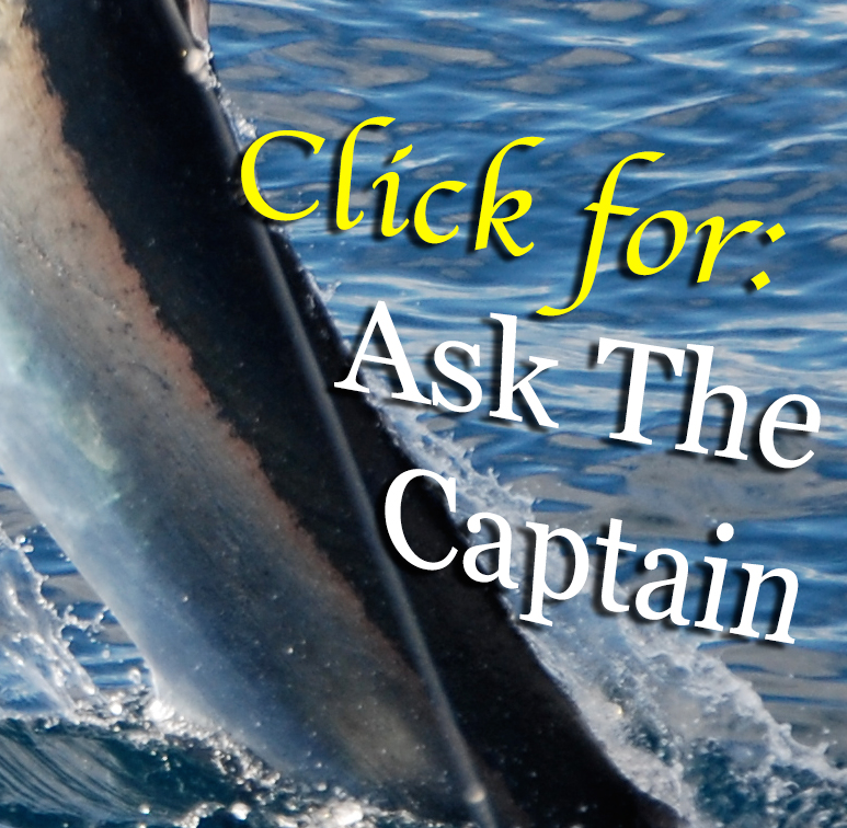 Ask the captain editoral fishing question