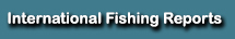 international fishing reports florida