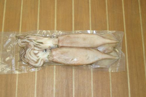 Swordfish Squid