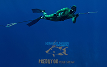 headhunter polespear spearfishing predator